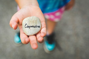 cooperative-1246862_640